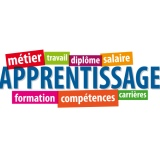 Tribune - Pourquoi l'apprentissage ne marche pas en France ?