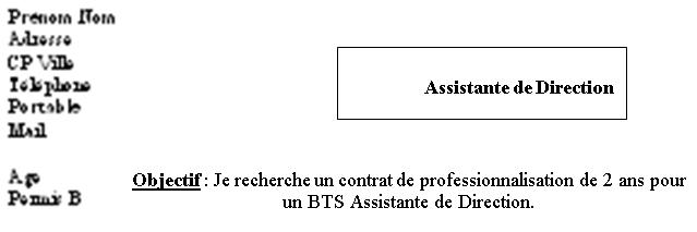 comment faire un cv adapt u00e9  u00e0 sa profession